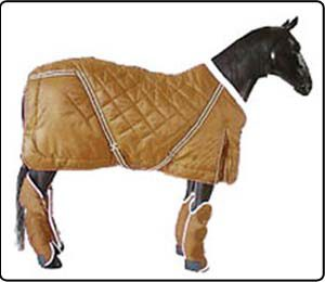 Horse Travel Wear