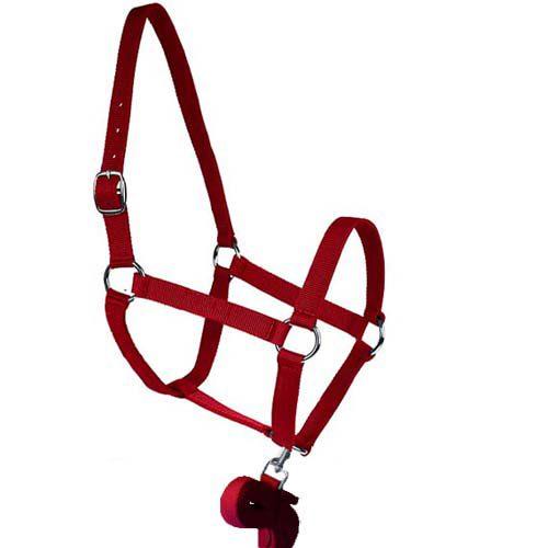 Horse Halter Red