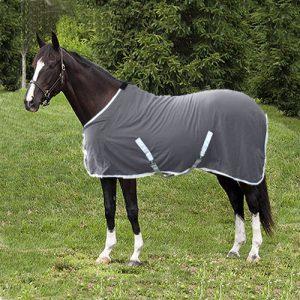 Horse Daysheet