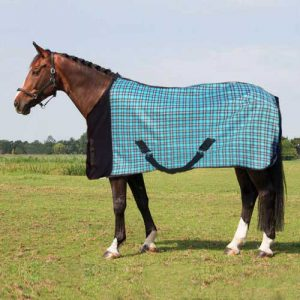 Fleece Blanket - Teal Checker