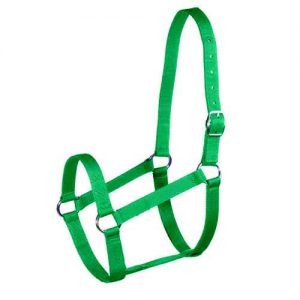 Halter and Lead Set - Apple Green