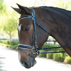 Economical Bridle